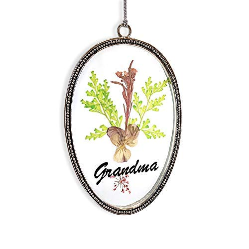 Banberry Designs Sonnenfänger mit gepressten Blumen, dekoratives Glas, mit bunten getrockneten Blumen, Großmutter (Getrockneten Gepressten Blumen)