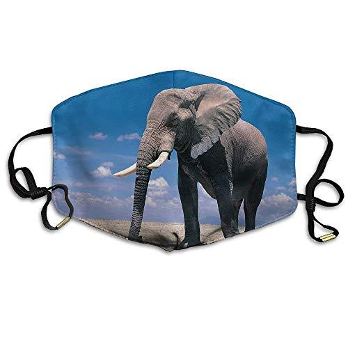 Voxpkrs Máscaras de boca impresas de elefantes grandes Máscaras antipolvo unisex Máscara...