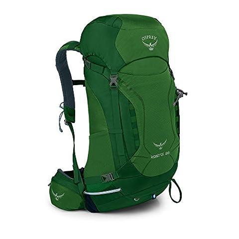Osprey Herren Kestrel Backpack, Jungle Green, 64 x 30 x 32 cm, 28 Liter