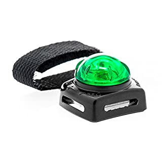 Adventure Light Guardian Lights for Small Pets, Green