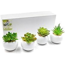 OFFIDIX Plantes Artificielles Pour La Maison Et La Décoration de Bureau avec Pot En Céramique 4Pcs / Set Intérieur Faux Vert Plante En Pot (Ronde)
