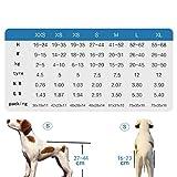 Sharplace Carrito de Sillas Ruedas para Mascotas Rehabilitación Accesorios de Animales Domesticos Fácil de Usar Elegante - XXS