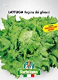 Sementi orticole di qualità l'ortolano in busta termosaldata (160 varietà) (LATTUGA REGINA DEI GHIACCI)