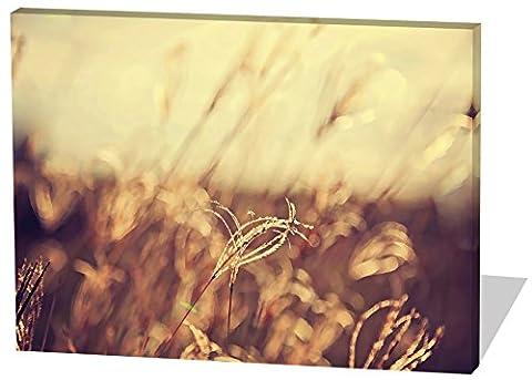 Auf dem Feld, Gemälde Effekt, schönes und hochwertiges Leinwandbild zum Aufhängen in XXL - 100cm x 70cm, echter Holzrahmen, effektiver Pigmentdruck, modernes Design für Ihr Büro oder (Feld 48 Tor)