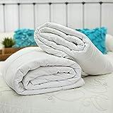 Silk Bedding Direct Zwei Bettdecken Mit Maulbeerseide Gefüllt. Queen Size. Sommer UND Frühlings/Herbstgewicht. Hypoallergen. 225cm x 220cm. ZERTIFIZIERUNG: Oeko® Standard 100. NIEDRIGER VERKAUFSPREIS