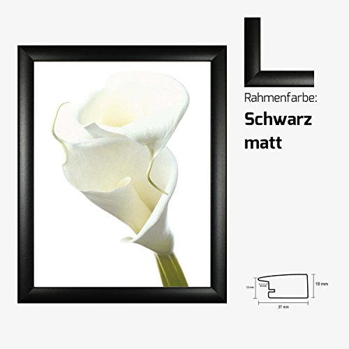 kunstdruck-prisma-lily-in-bloom-ii-weisse-lilie-blume-blute-40-x-50-cm-mit-mdf-bilderrahmen-acrylgla