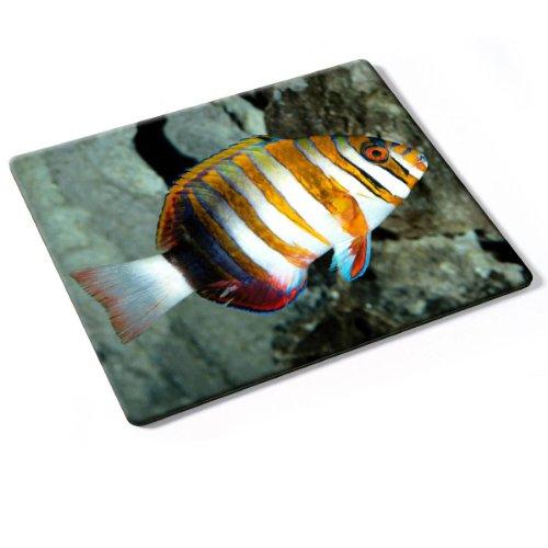 vida-marina-10048-designer-almohadilla-del-ratn-mouse-mouse-pad-con-diseo-colorido-autntica-alfombri