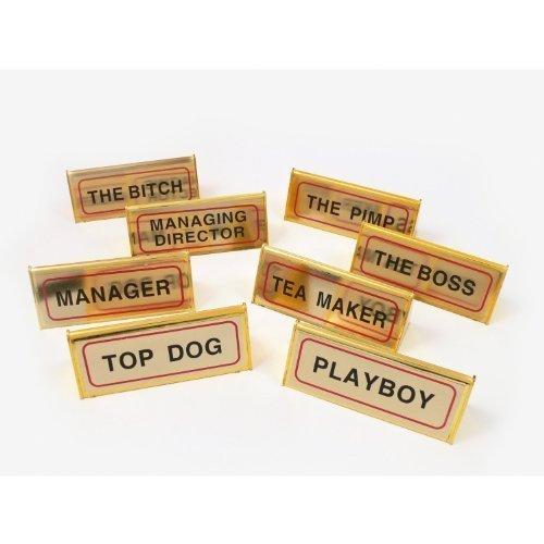 gold-look-novelty-desk-top-sign-prism-shape-job-title-playboy