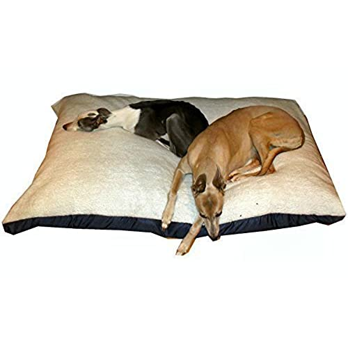 bed orthopedic beds toddler walmart cheap com dog ilates at for sale