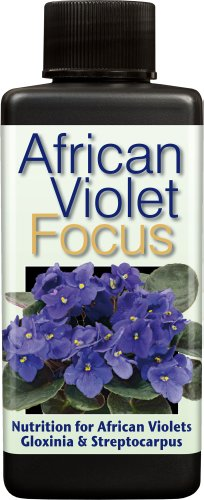 african-violet-focus-100ml