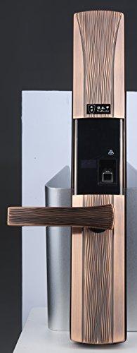 wanchuang Smart Tür Lock + 6RF Schlüssel, Tags, Fingerabdruck biometrische und Touch Tastatur Keyless-RFID Smart Türschloss + 5x RFID-Karten (Tastatur Biometrische)