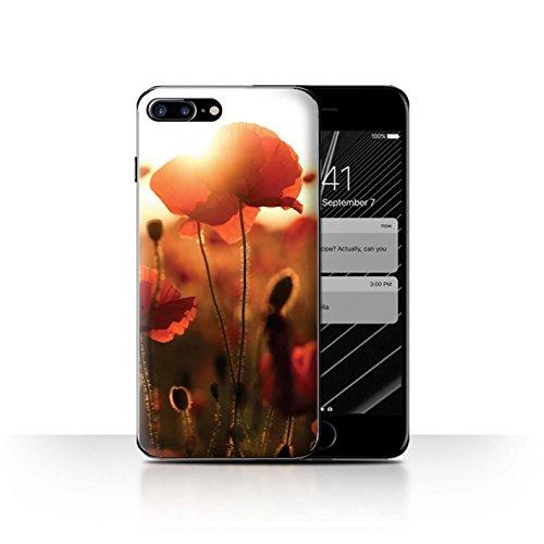 Stuff4 Hülle / Case für Apple iPhone SE / Mohnfeld Muster / Mohnblumen Kollektion Erfassen Sie Licht