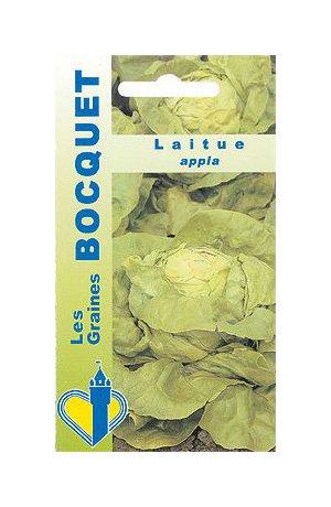 Les Graines Bocquet - Graines De Laitue Appia - Graines Potagères À Semer - Sachet De 3Grammes