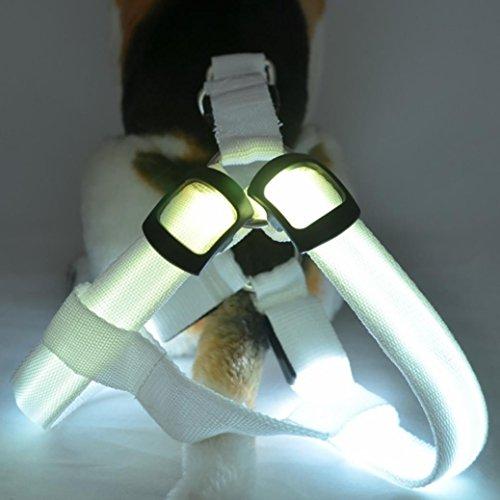 samLIKE Stoviglie, LED Cani Pettorina Regolabile Morbido Cintura toracica semplice sicuro Tracolla In nylon nastro Tether Control comode per cani animali domestici
