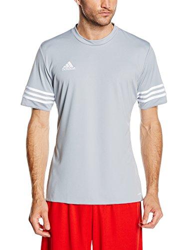 adidas Entrada 14 JSY, Camiseta para hombre, Gris (Silver/White), XL, F50493