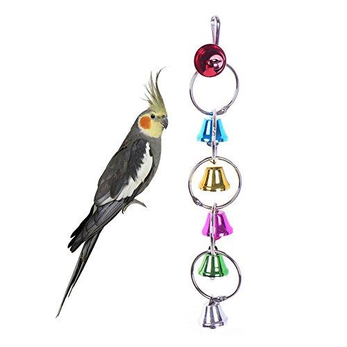 Toruiwa Vogelspielzeuge Glockenkett Papageien Käfige Zubehör mit 6 Glocken und Ringe bunt hängbar für Papageien und Vogel (Vogel Glocke)