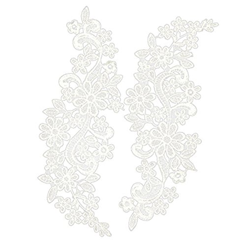 NUOLUX Paar von gestickten Blumen Spitze trimmen Kanten Schneiden Nähen Handwerk (Paar Kostüme Diy)