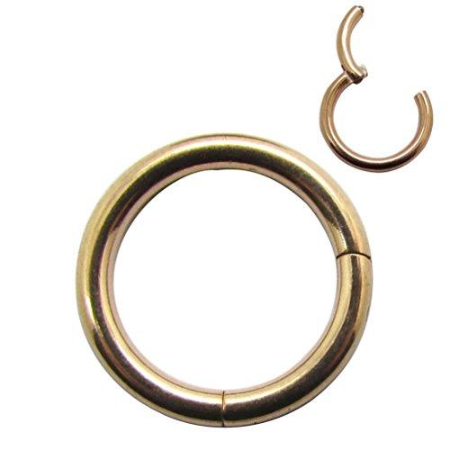 NewkeepsR 12G Rose Gold 316L chirurgischen Stahl Septum Scharnier Clicker Segment Nase Helix Daith Knorpel Ringe (Innendurchmesser 10mm) (Chirurgischer Stahl 18g Nasenring)