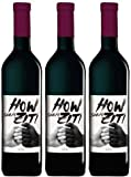 Barth Wein- und Sektgut Howzit Shiraz Kap Vino Estate 2014 Trocken (3 x 0.75 l)