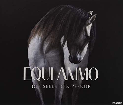 le der Pferde   Pferdefotografie   Equine Photography by Wiebke Haas ()
