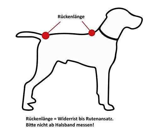 Hundebademantel Gr. 6: ab ca. 69 cm Rückenlänge – trocknet auch den Bauch! geeignet für sehr große Hunde z.B. Berner Sennenhund, weibl. Neufundländer - 6