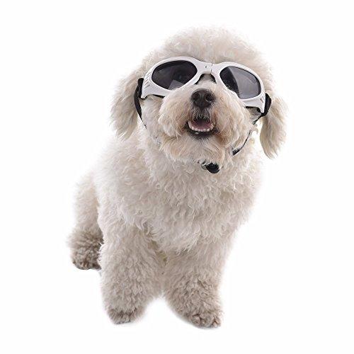 Aprigy - Netter Hund Sunglass Sun-Glas-Haustier-Katzen-Schutzbrille Tragen Auge Welpen Augenschutz Pet Grooming Zubeh?r [Wei? ]