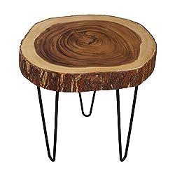 Cander Berlin MNT 0440 Beistelltisch Rinde Suar (45-55) x 46 cm Baumscheibe Metall Holz Sofatisch Kaffeetisch Couchtisch Natur Regenbaum Tisch Abstelltisch rund Massivholz