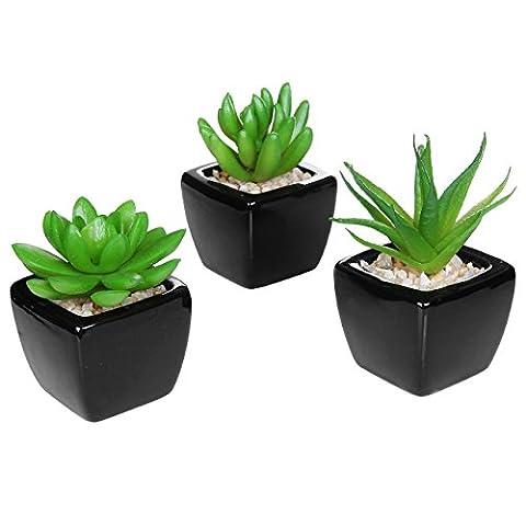 Set of 3 Modern Home Decor Mini Succulent Artificial Plants with Square Black Ceramic Pots - MyGift