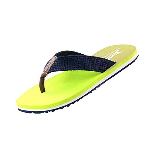 Baymate Unisex Adulto Infradito Graduale Colore Coppie Pantofole Casuale Sandali Uomo Verde