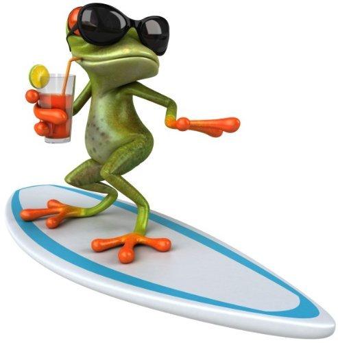 younikat Sticker Surfer Frosch XL I 50 x 50 cm I Fun-Aufkleber für Badezimmer Wohnwagen Wohnmobil Bulli als Auto-Aufkleber I lustig cool wetterfest I kfz_378