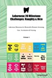 Labernese 20 Milestone Challenges: Naughty & Nice Labernese Milestones for Memorable Moment, Grooming, Care,  Socialization & Training Volume 1