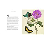 Larte-botanica-nei-secoli