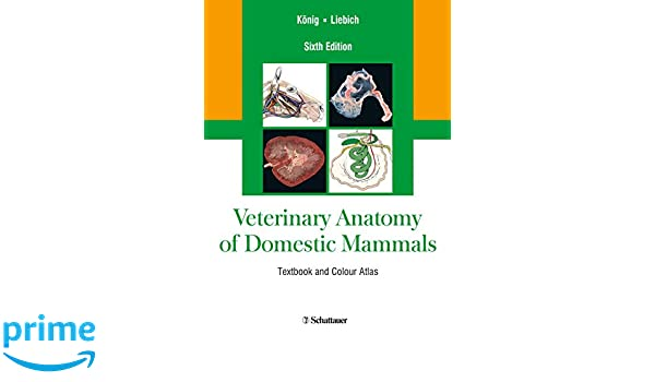 Veterinary Anatomy of Domestic Mammals: Textbook and Colour Atlas ...