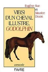 Vie(s) d'un cheval illustre, Godolphin