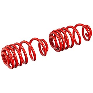 AutoStyle IA 62402 Lowering Springs