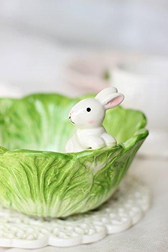 siarh-kohl-schussel-kaninchen-obstschale-salatschusselfur-musli-geback-nusse-dessert-salat