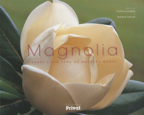 Magnolia : L'arbre fleur venu du nouveau monde