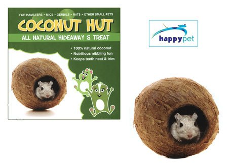 Small Pet Toy Coconut Hut 1