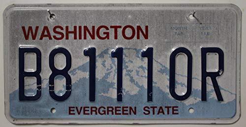 USA Nummernschild WASHINGTON ~ US Kennzeichen plaque d\'immatriculation ~ Blechschild