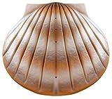 """Wasser biologisch abbaubar Verbrennung Asche Casket/Urne–Erwachsene Größe–Die """"Shell–Sand"""""""