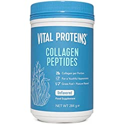 Hydrolyzed Collagen Powder Supplement - Vital Proteins Collagen Peptides 20,000 mg Serving, Paleo Friendly, Grass-Fed, Low Sugar Protein... (10oz)