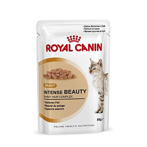 Royal Canin Intense Beauty in Soße, 4er Pack (48 x 85 g Packung) -