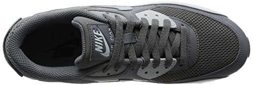 Nike Herren Air Max 90 Essential Laufschuhe Mehrfarbig (Cool Grey/wolf Grey/pure Platinum/white)