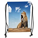 ZKHTO Drawstring Sack Backpacks Bags,Safari Decor,Roaring Yawning Lion Under The Clear Sky Summertime Sunny Day Dangerous African Animals Decorative, Soft Satin,5 Liter Capacity,Adjustable St