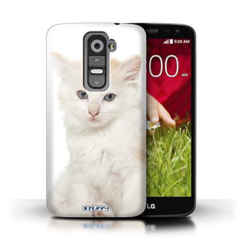 Kobalt® Imprimé Etui / Coque pour LG G2 Mini/D620 / Abyssinien conception / Série Espèces de chats Kurillian