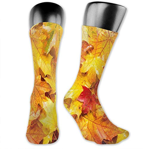 Preisvergleich Produktbild vnsukdlfg Compression Medium Calf Socks, Wet Fall Leaves Rainy Weather Maple Tree Nature In November Change Of Seasons