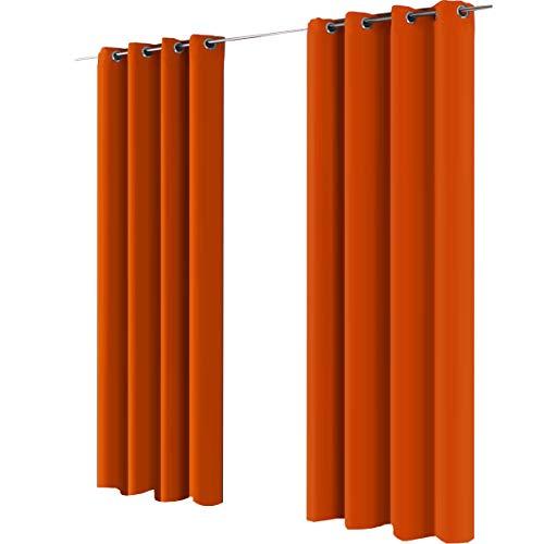 Gräfenstayn cortina térmica y opaca Alana, cortina con ojales, aprox
