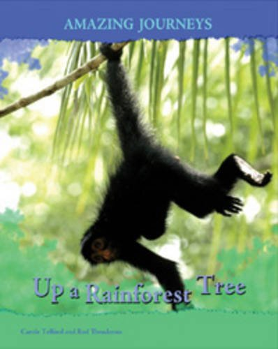 Up a Rainforest Tree  (Amazing Journeys)