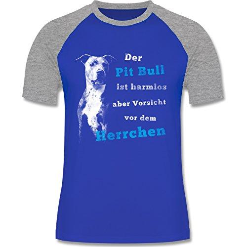 Hunde - Der Pit Bull ist harmlos aber Vorsicht vor dem Herrchen - zweifarbiges Baseballshirt für Männer Royalblau/Grau meliert