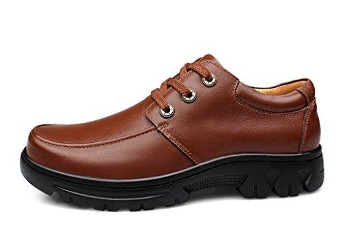 Minitoo , Chaussures à lacets homme Marron - marron